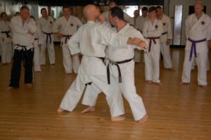 yves-alain-thevoz-and-richard-atteleyn-bunkai-8